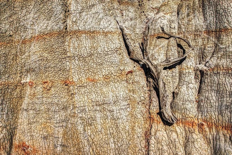 Sagebrushed-North Dakota