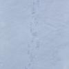 Polar bear tracks on sea ice in Lancaster Sound
