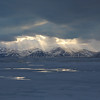Our last evening and a cold light shone down on Bylot Island