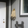 Polar Bear boots outside a house in Pond Inlet