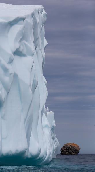 Iceberg at Akpait