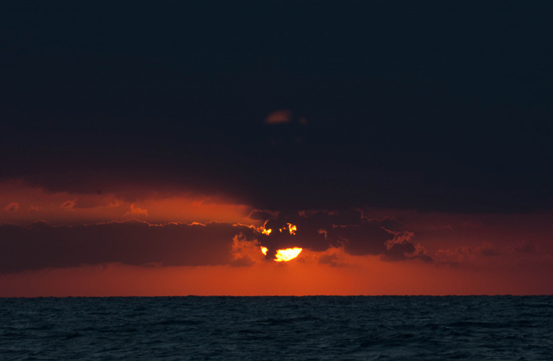 Bahama_Banks_2005-02-1189