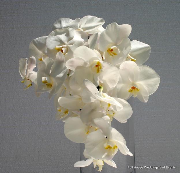 Cascading White Phalaenopsis Bouquet