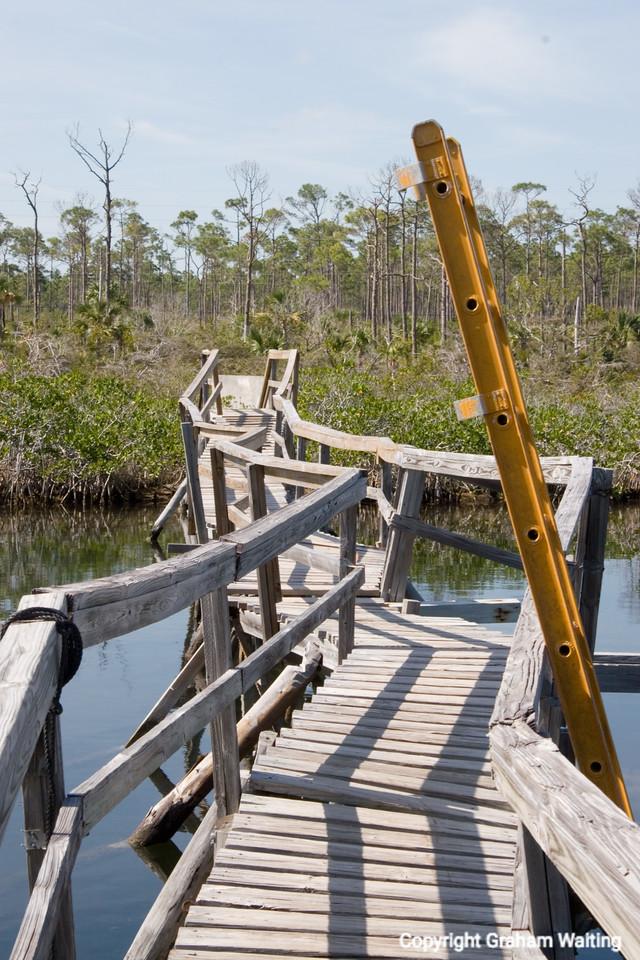 Footbridge in Lucaya National Park, Grand Bahama Grand Bahama