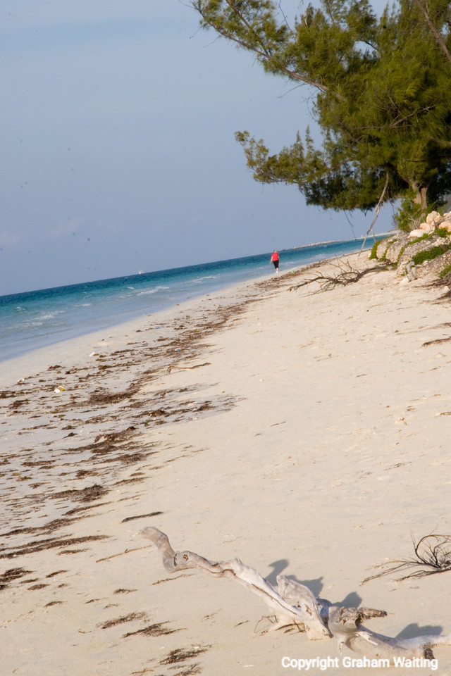 Beaches of the Grand Bahama Grand Bahama