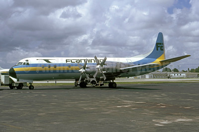 Flamingo Airlines Lockheed 188C Electra N172PS (msn 1109) MIA (Bruce Drum Collection). Image: 950762.