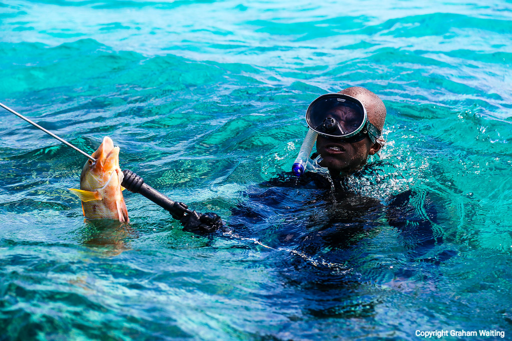Grand Bahama, diving for snapper