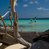 Jim Klug Photos - Fly Fishing H2O / Pelican Bay - Grand Bahama 2011