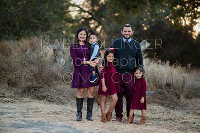 Baines Family 2018-9