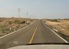 Cows in the road along Mex HWY 1 - Baja California Sur