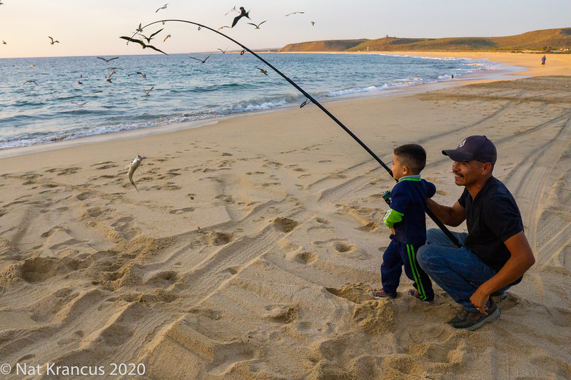Learning to Fish, Punta Lobos, Todos Santos, Baja California Sur, Mexico, January 2019