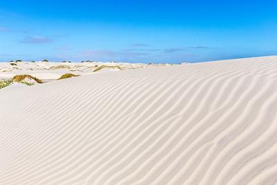 Dunes on Isla de Magdalena,  Bahía Magdalena.  Baja California Sur, Mexico.