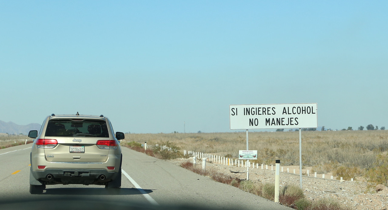 Safe road sign (don't drink and drive)