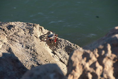 MVCDS Winterim - Baja 2011 Filename: TOP_7466