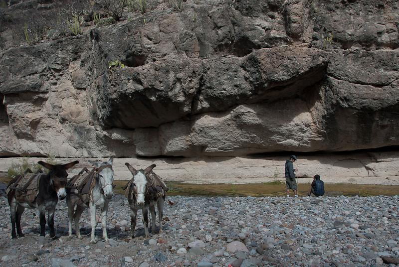 MVCDS Winterim - Baja 2011 Filename: TOP_7891