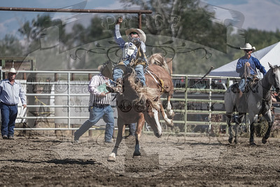 Baker Co Fair and Panhandle Rodeo 2019 - Monday