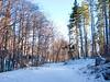 Views from my morning walk