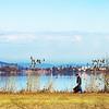 Lake Baldegg from the South end