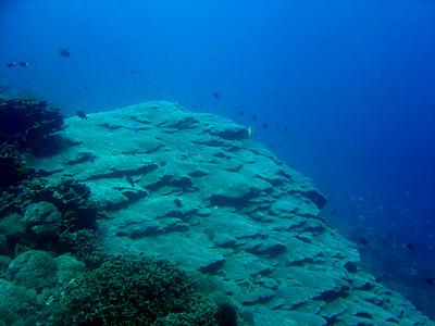 Nusa Penida - SD