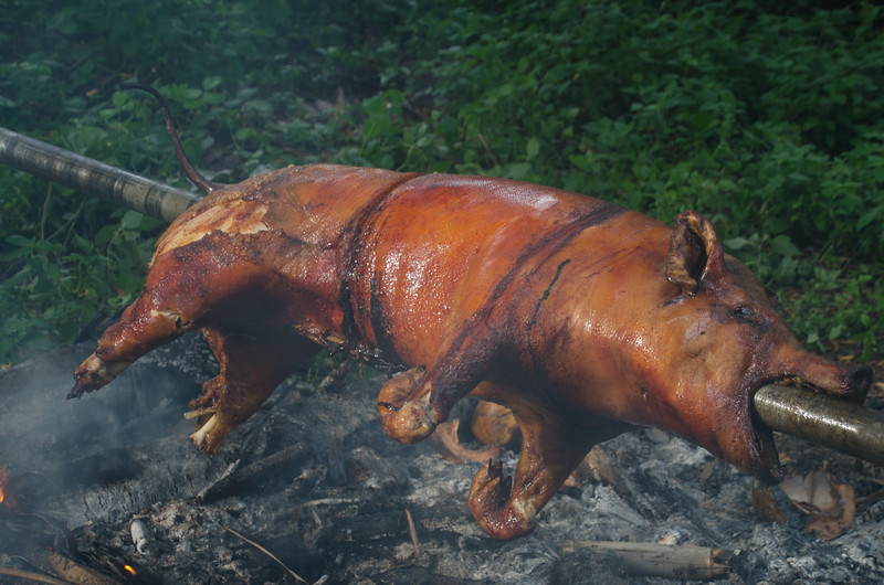 It was delicious!  Babi guling...traditional roast pig