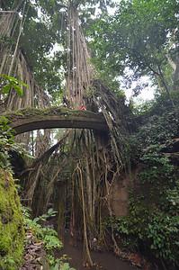 Monkey Forest, Ubud, Bali