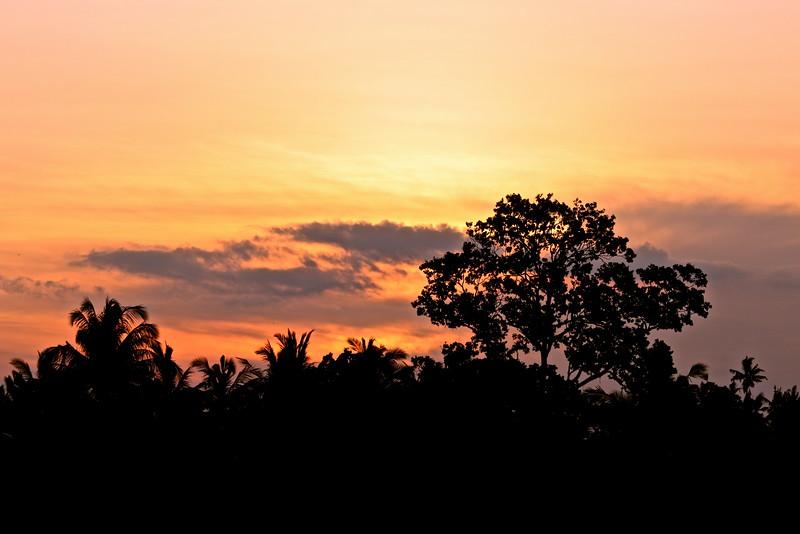 Coucher de soleil sur la jungle