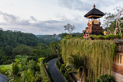 Enjoying the gorgeous uBud's woodland greenery.