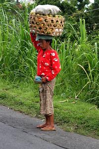 Pulukan, Bali