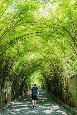 The Bamboo trees driveway at W Bali.
