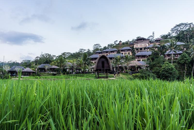 Mandapa - a Ritz-Carlton Reserve.