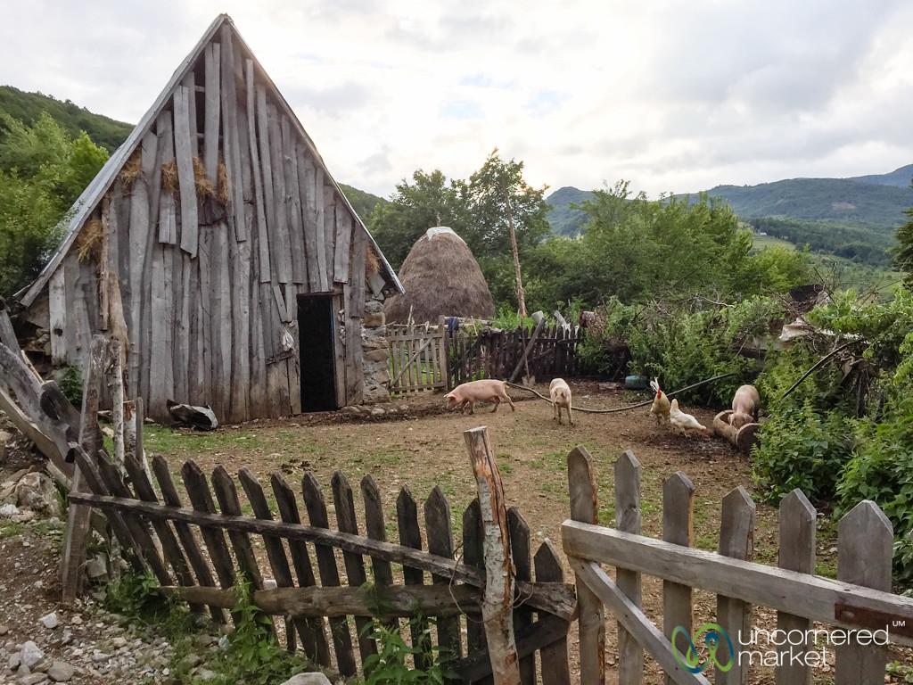 Farm Homestay in Lepushe, Albania