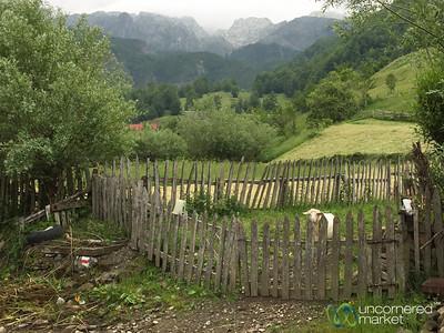 Village Farm Scene - Lepushe, Albania