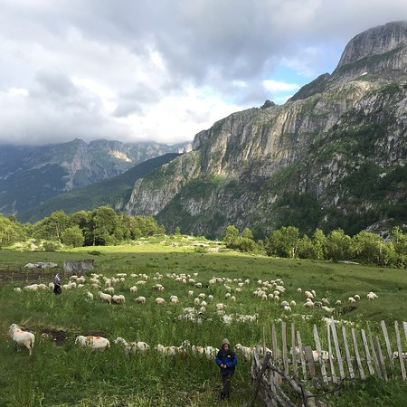 Shepherd Families in Albanian Alps