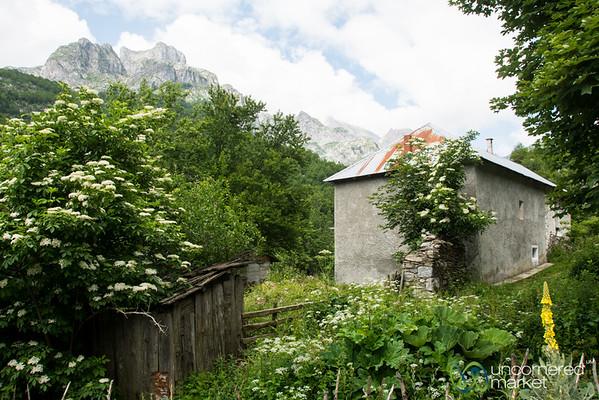 Homestay in Cerem, Albania