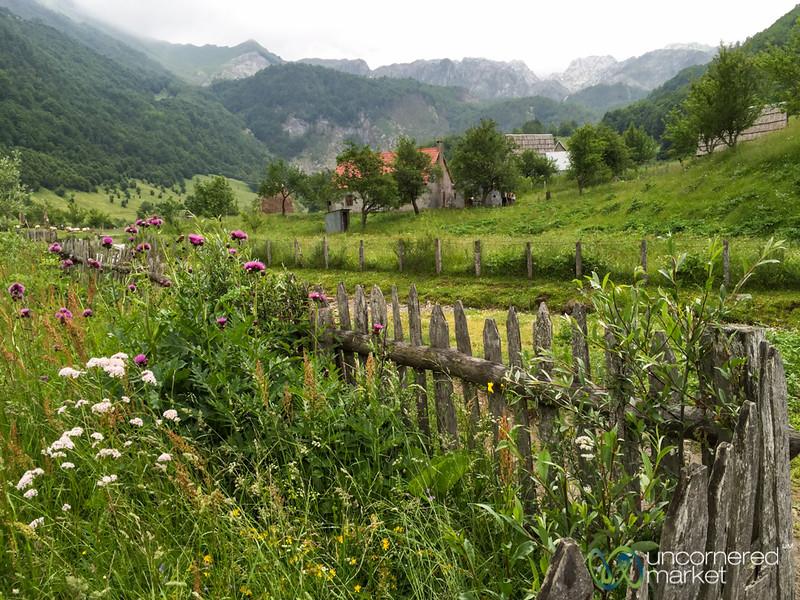 Village Life in Lepushe, Albania