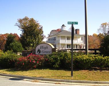 High Grove Ball Ground GA Neighborhood (1)