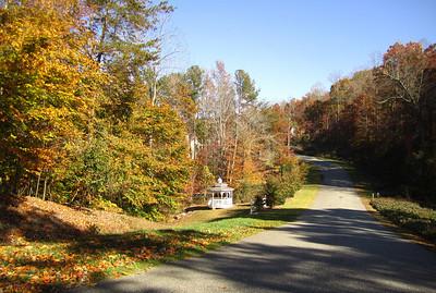 Hightower Lake Ball Ground GA Homes (13)