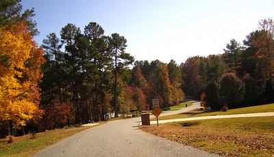 Hightower Lake Ball Ground GA Homes (5)