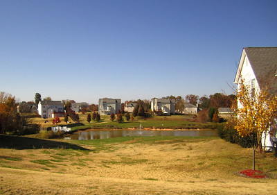 Holly Trace City Of Ball Ground GA Neighborhood (3)