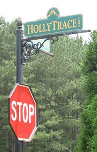 Ball Ground Neighborhood Holly Trace (4)