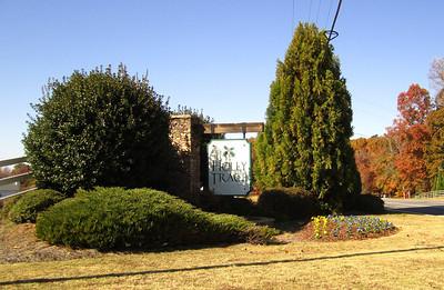 Holly Trace City Of Ball Ground GA Neighborhood (1)