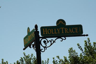 Ball Ground Neighborhood Holly Trace (14)