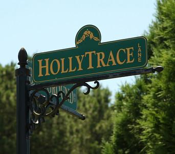 Ball Ground Neighborhood Holly Trace (12)