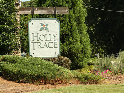 Ball Ground Neighborhood Holly Trace (1)