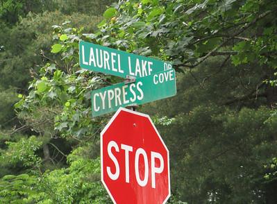 Laurel Lake Ball Ground GA (16)