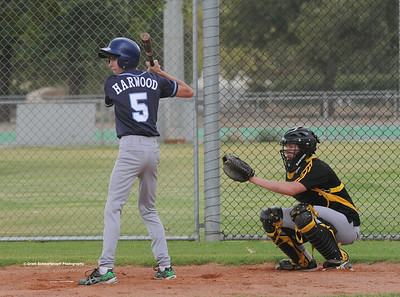 Hayden Sanford (Barmera) batting