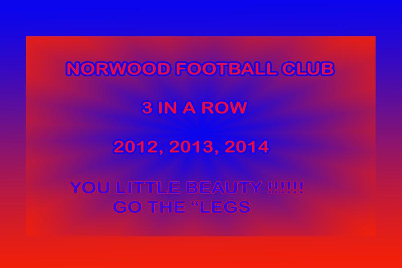 2014 Grand Final Norwood v Port (Heading only)