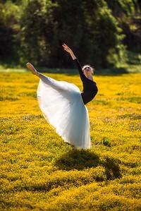 Nikon D810 Beautiful Ballerina Dancers! Goddesses Dancing Ballet!  Ballet amongst the California Spring Wildflowers!