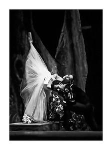 ballet_DSC6514_12x16