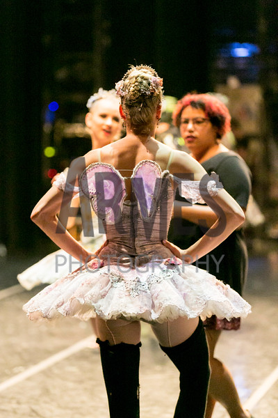 Sleeping Beauty 2018 (backstage finale), Carolina Ballet